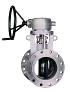 Lamellar seal butterfly valve 404