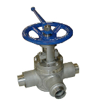 Lift type plug valve 301C