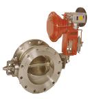 Butterfly valve 401